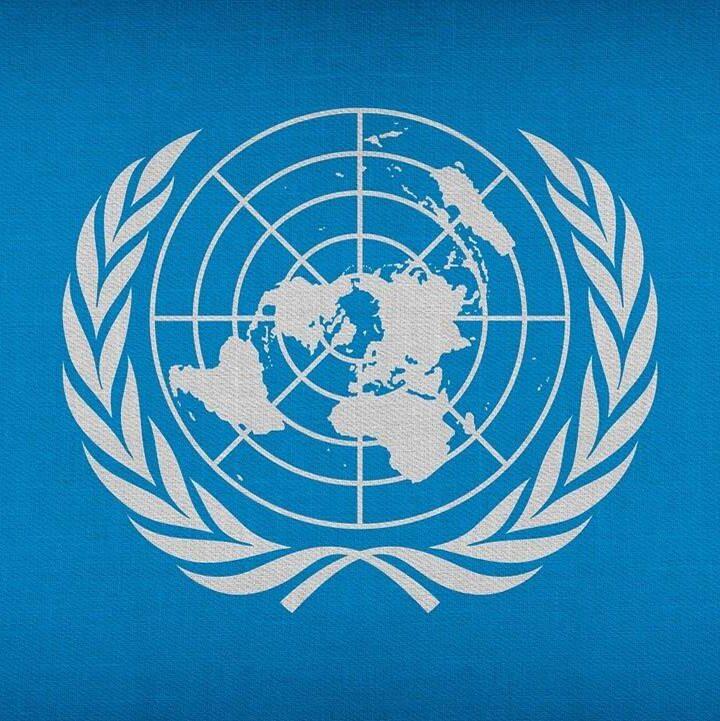 La relatora especial de la ONU para temas de derechos humanos, hizo un llamado a Cerrejón y al Gobierno de Irlanda, para retomar el diálogo y acabar con la huelga en La Guajira
