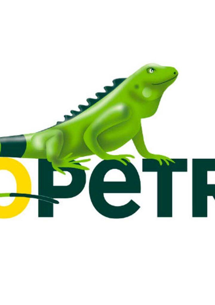 Ecopetrol invertirá entre US$3.500 y US$4.000 millones en 2021