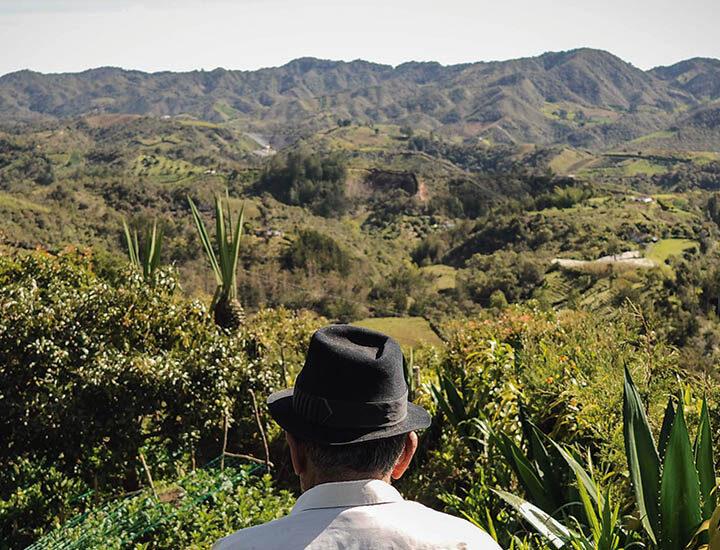 MinAgricultura intercambió experiencias en comercialización, agricultura familiar, manejo del covid-19 en el agro y otros temas con Ministerios de Perú, Ecuador y Bolivia